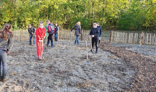 Kinderen van de basisscholen Sint Antonius en De Mient planten bomen voor het eerst Tiny Forest in Nieuwe Niedorp.