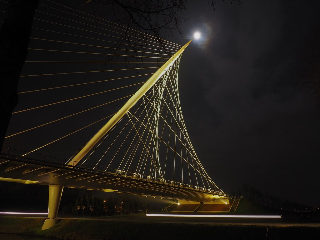 Calatrava brug De Harp (Foto: Johan de Vos) © rodi