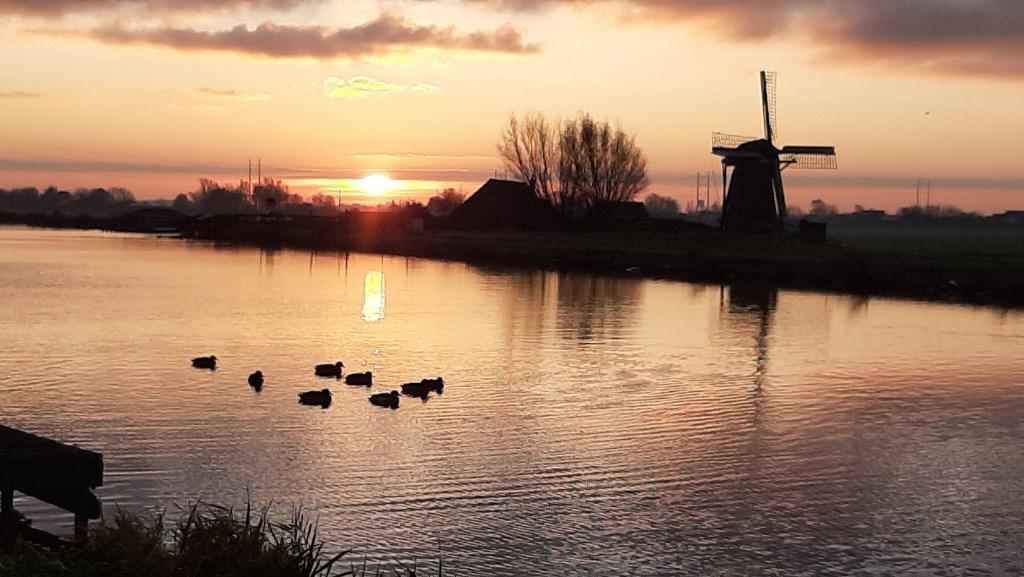 De Ringvaart in Abbenes (Foto: Gerwin Appelman) © rodi