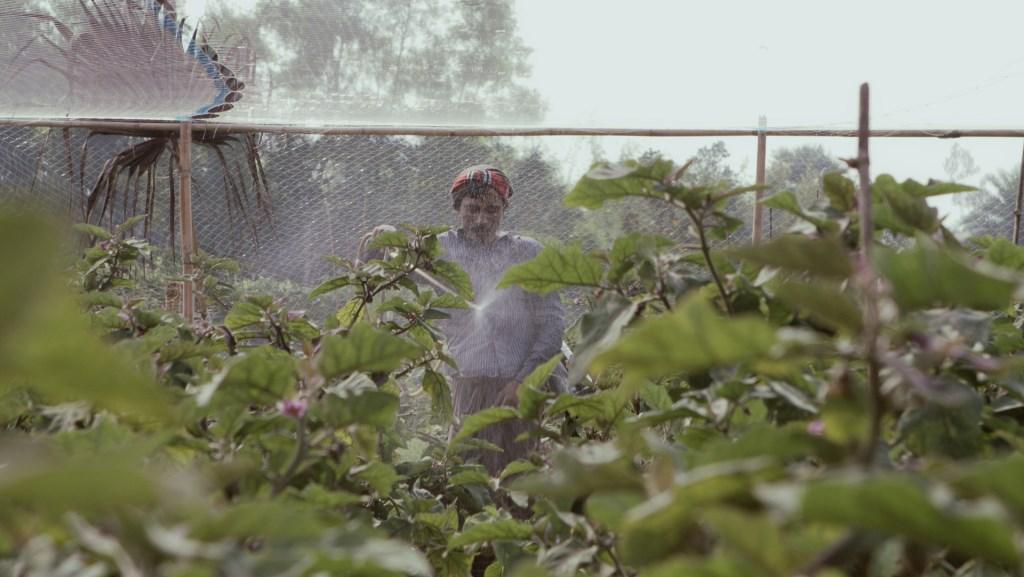 Beslissen weldoorvoede westerlingen over voedsel van armen? (Foto: Beeld uit film) © rodi