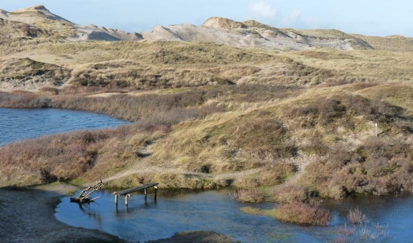 """Gedeputeerde Esther Rommel (Natuur en Landschap): """"We kijken samen met de betrokkenen per gebied wat nodig is om de stikstofdepositie in onze Natura 2000-gebieden te laten afnemen."""