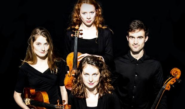 <p>Het Belinfante strijkkwartet. </p>
