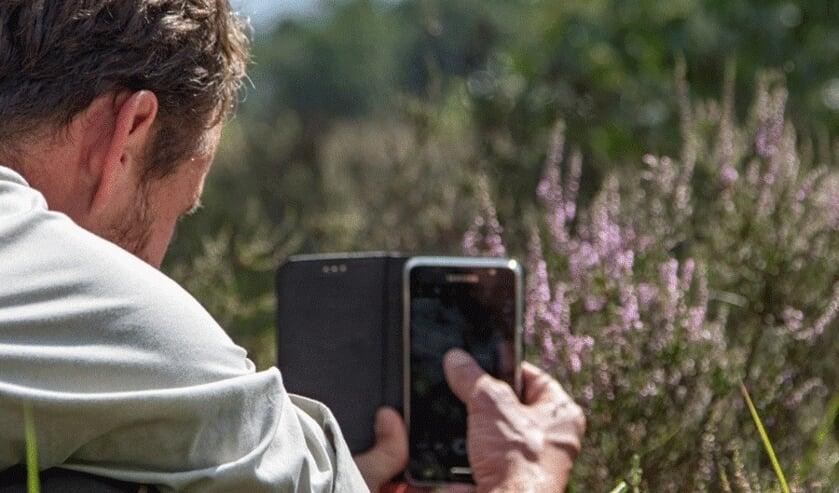 Staatsbosbeheer biedt een serie workshops natuurfotografie aan.