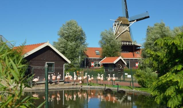 Het is feest in Van Blanckendaell Park