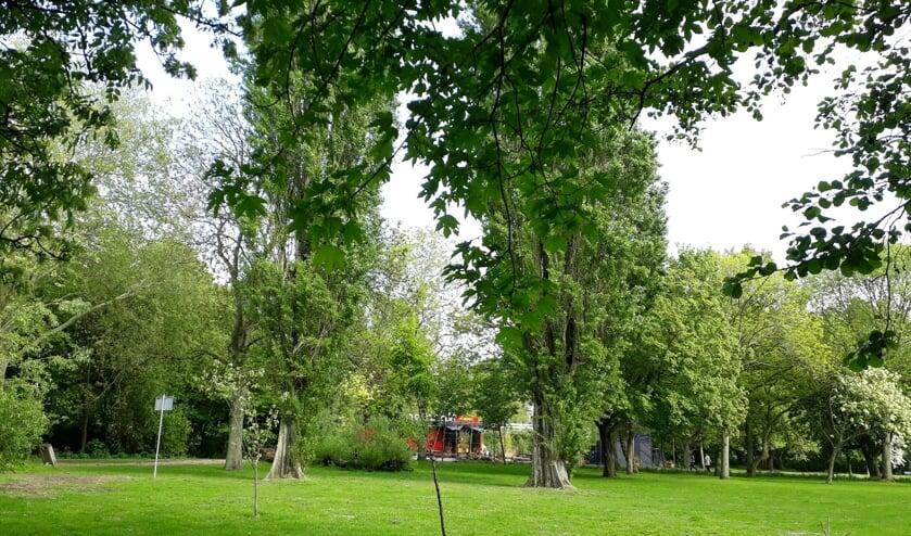 Een groen Noorderpark.
