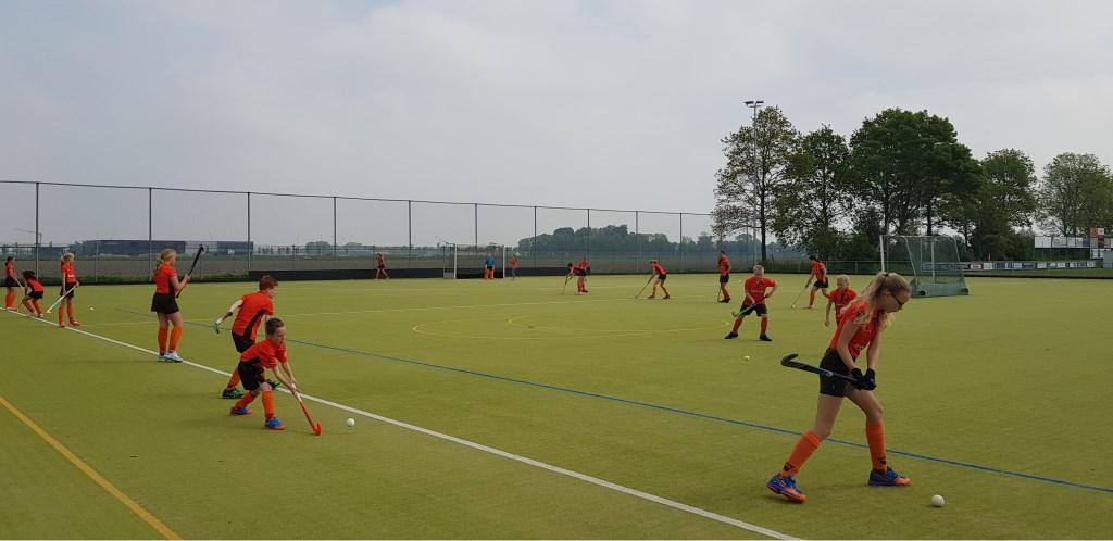 Dankzij het vernieuwde sponsorcontract kan MHC de jeugd nóg meer plezier laten beleven aan de sport. (Foto: Aangeleverd) © rodi