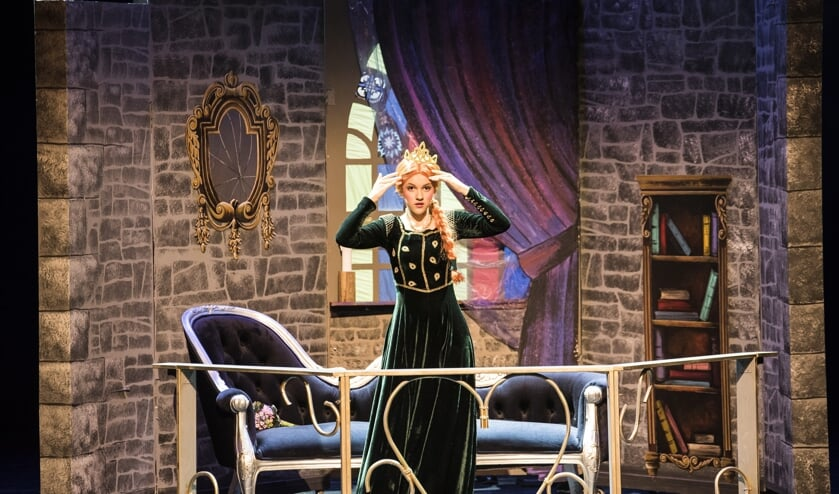 JTS speelt elk jaar verschillende producties in het theater.