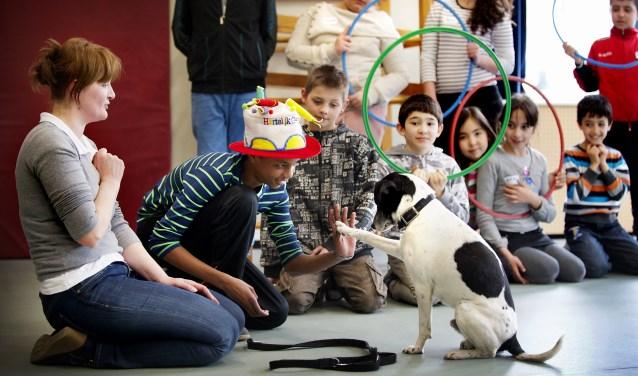 In de les leer je omgaan met honden.