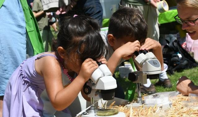 Kijken door een microscoop naar waterbeestjes.