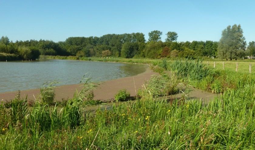 Waterpartij Suyderbraeck.