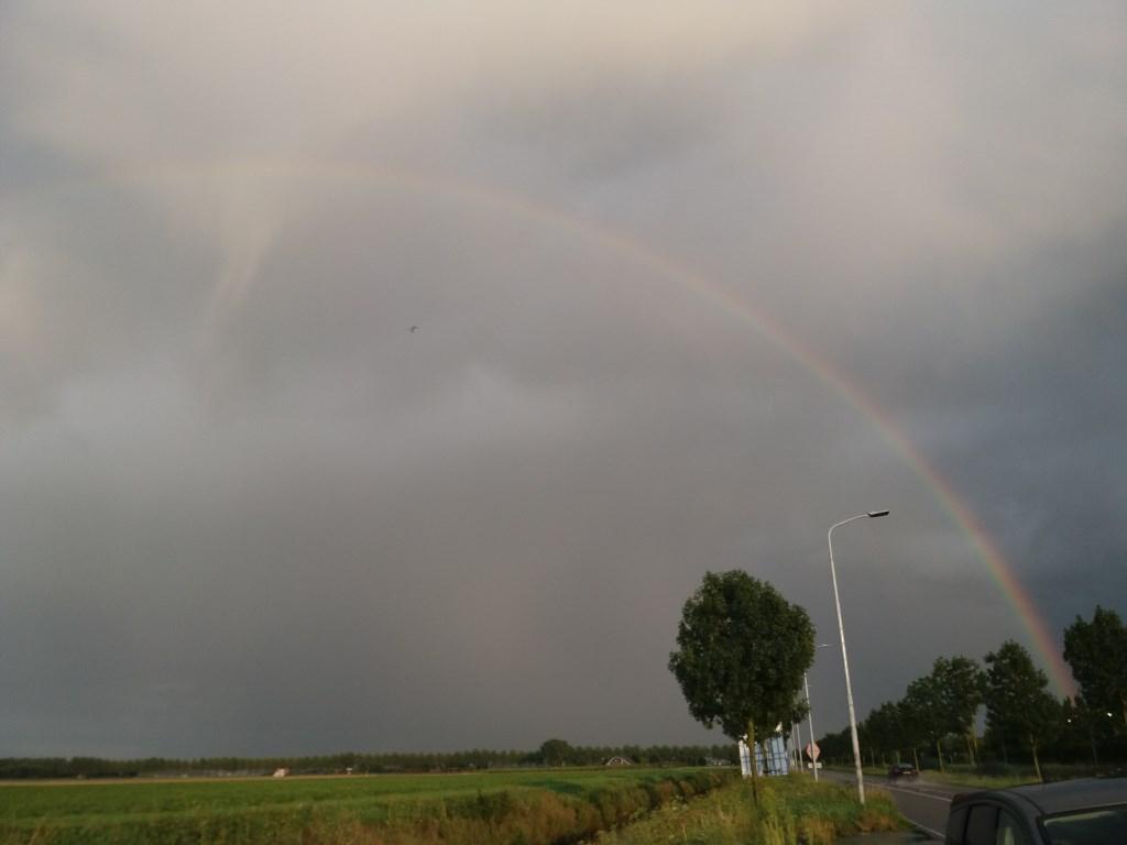 'Vlieg met me mee naar de regenboog'.  (Foto: Jeannette Lebbink) © rodi