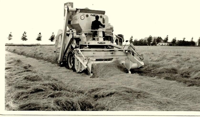 1962, op de akker bij Waltherus Koeckhoven en de toenmalige Sloterweg. Christiaan Saarloos is aan het graszaad combinen.