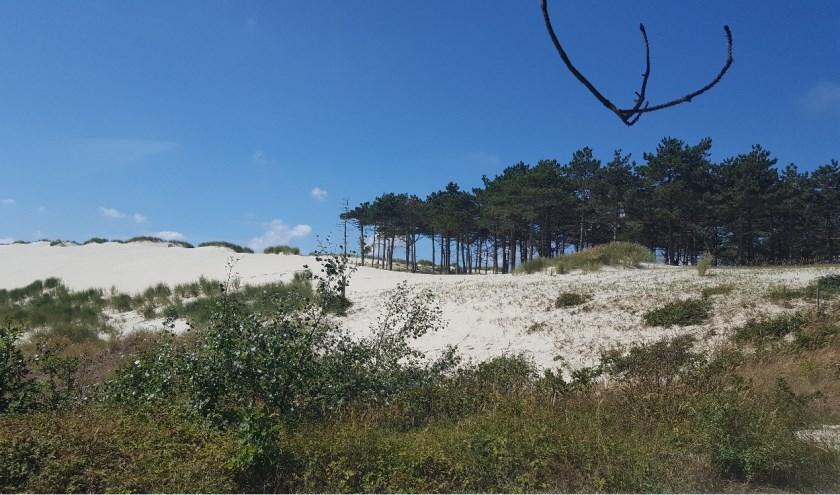 Bij goed weer staat een mooie tocht door de duinen op het programma.