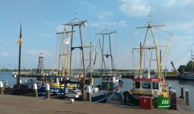 Laatste stadswandeling Vereniging Oud Enkhuizen.