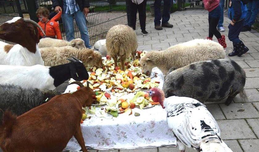 Traditiegetrouw wordt de tafel op dierendag extra feestelijk gedekt voor de dieren.