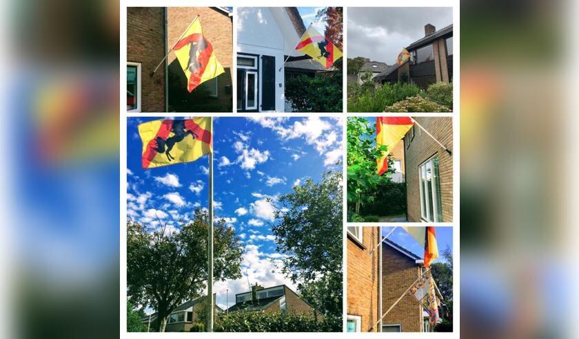 De vlag van Bakkum.