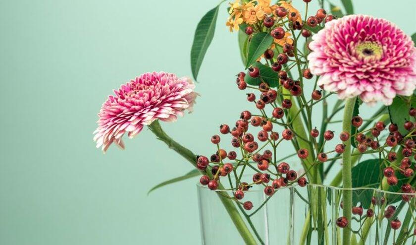 Mooie bloemen fleuren altijd de boel op.