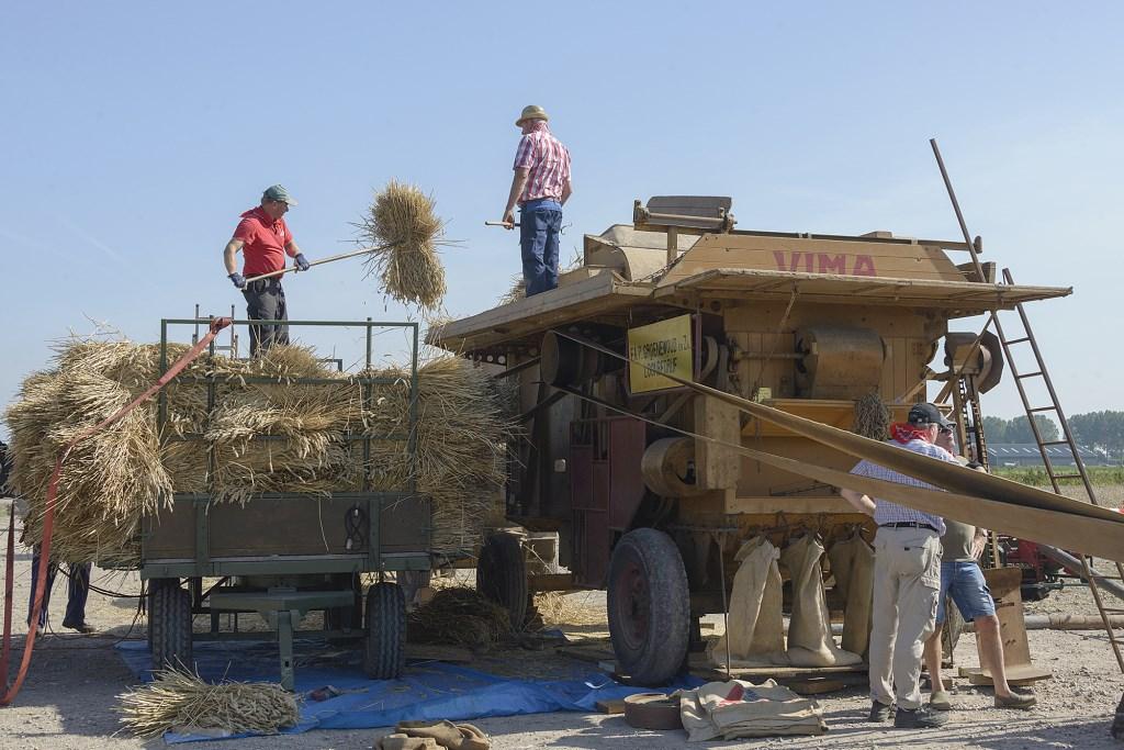 Het graan wordt tot balen gevormd.  (Foto: Kees van der Veer Hoofddorp) © rodi