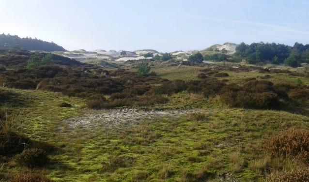 Waar komt het zand vandaan, waarom zijn deze duinen zo hoog en breed?