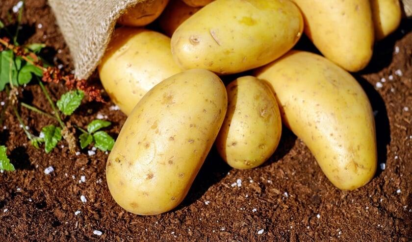 Het is bijna september, tijd om de aardappels te oogsten.