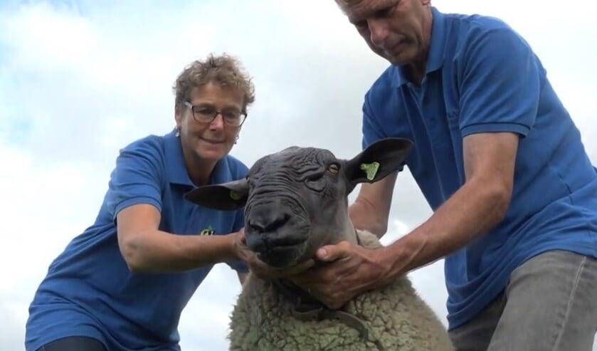Coby en Jan Schilder met hun opvallende kampioenschaap Kordaat.