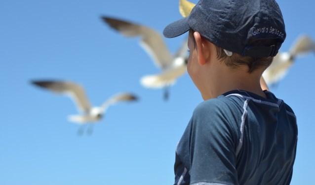 Pax Kinderhulp zoekt vakantieouders die kinderen een fijne vakantie willen geven.