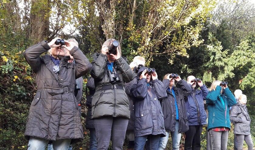 Vogelcursus in Hertenkamp Enkhuizen met theorie en excursies.