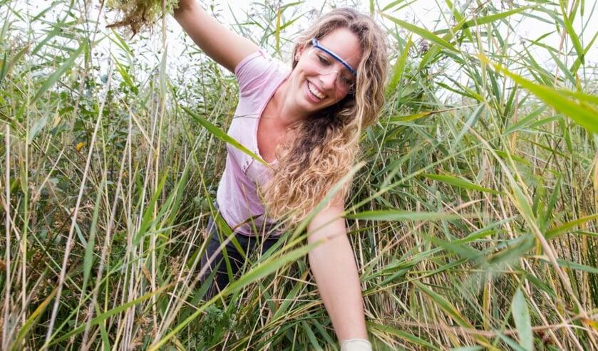 Word jij een trainee bij Landschap Noord-Holland?