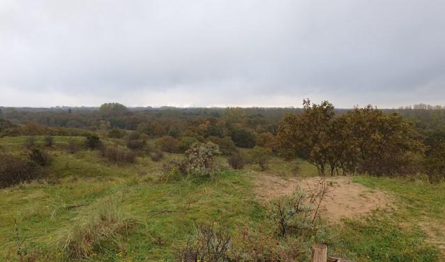 Uitzicht vanaf uitkijkpunt Papenberg.
