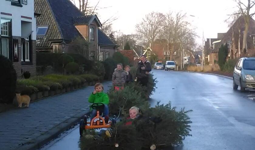 Woensdag houdt de gemeente weer een kerstbomeninzamelactie en vraagt daarbij hulp van de jeugd.