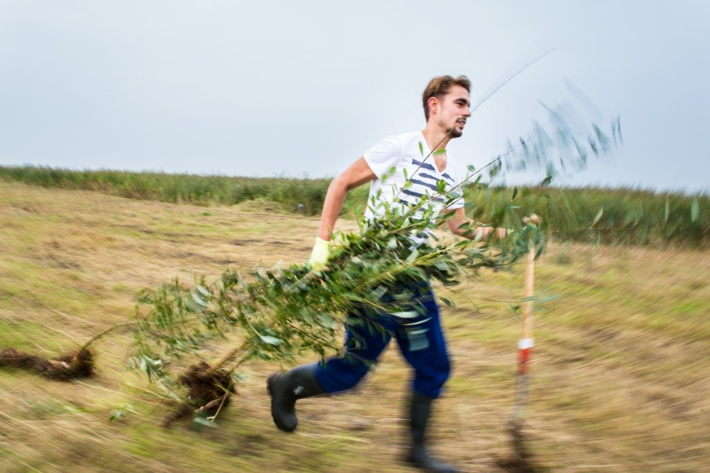 Meld je aan als trainee bij Landschap Noord-Holland. (Foto: Photographer: Aico Lind) © rodi