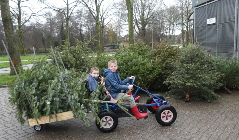 Twee jeugdige Purmerenders hadden het goed bekeken. Zij brachten de bomen met een aanhanger achter hun skelter.