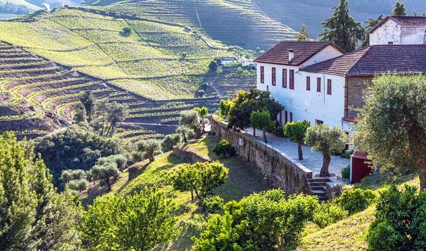 Het prachtige binnenland van Portugal is het waard om te ontdekken met Anneke en Joop Soonius.