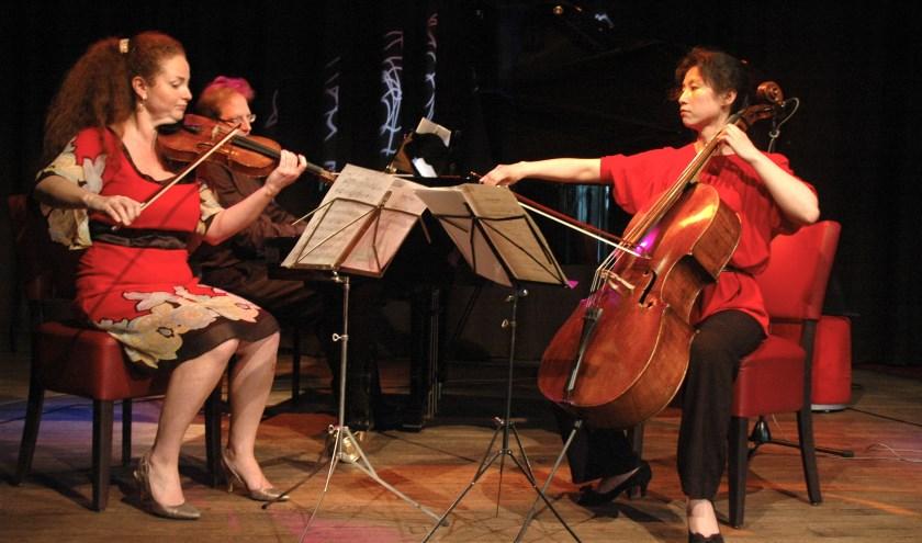 Het Erasmus Trio.