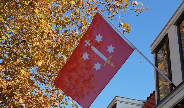 <p>De Haarlemvlag. Maak een foto van de uw vlag, mail deze naar contact@verjaardaghaarlem.nl en doe mee met de vlaggenwedstijd.</p>