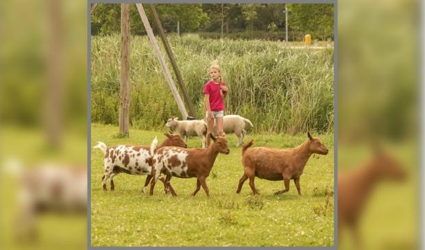 <p>De duurzame zorgboerderij wil actief bijdragen aan een leefbare en sociale wereld. </p>