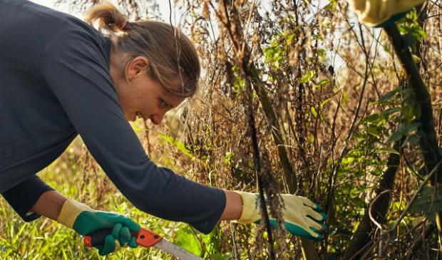 <p>De werkdag gaat niet door, maar u kunt wel op eigen initiatief werken in de natuur.</p>