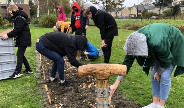 <p>Leerlingen van het Clusius College gaven vorig jaar op het grasveld langs de Westtangent het startschot voor de Plantestafette.</p>