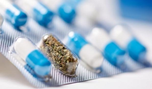 <p>Praat mee over het drugsbeleid in Nederland.</p>