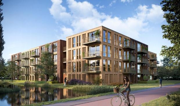 <p>De massief houten appartementen van project M&rsquo;DAM.&nbsp;</p>