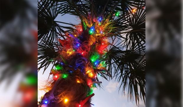 <p>Jolanda Hamersma haalde de tropische kerstsfeer naar haart achtertuin.</p>