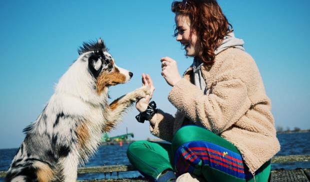 <p>Indy wil graag haar eigen psychosociale hulphond opleiden. Wie helpt haar haar doel te bereiken?</p>