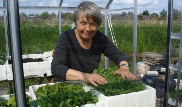 <p>Adri verzorgde met overgave haar moestuin in Landsmeer.</p>