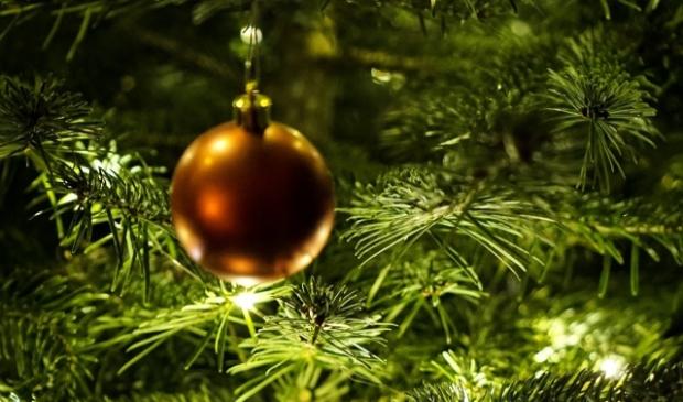 <p>Een kerstboom cadeau geven? Mooie kerstgedachte.</p>