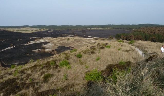 De expositie laat zien waar de branden waren en welke natuur verloren is gegaan.