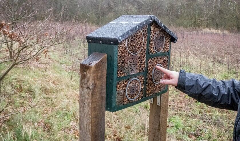 Dit insectenhotel staat in het bosgebied van Castricum.
