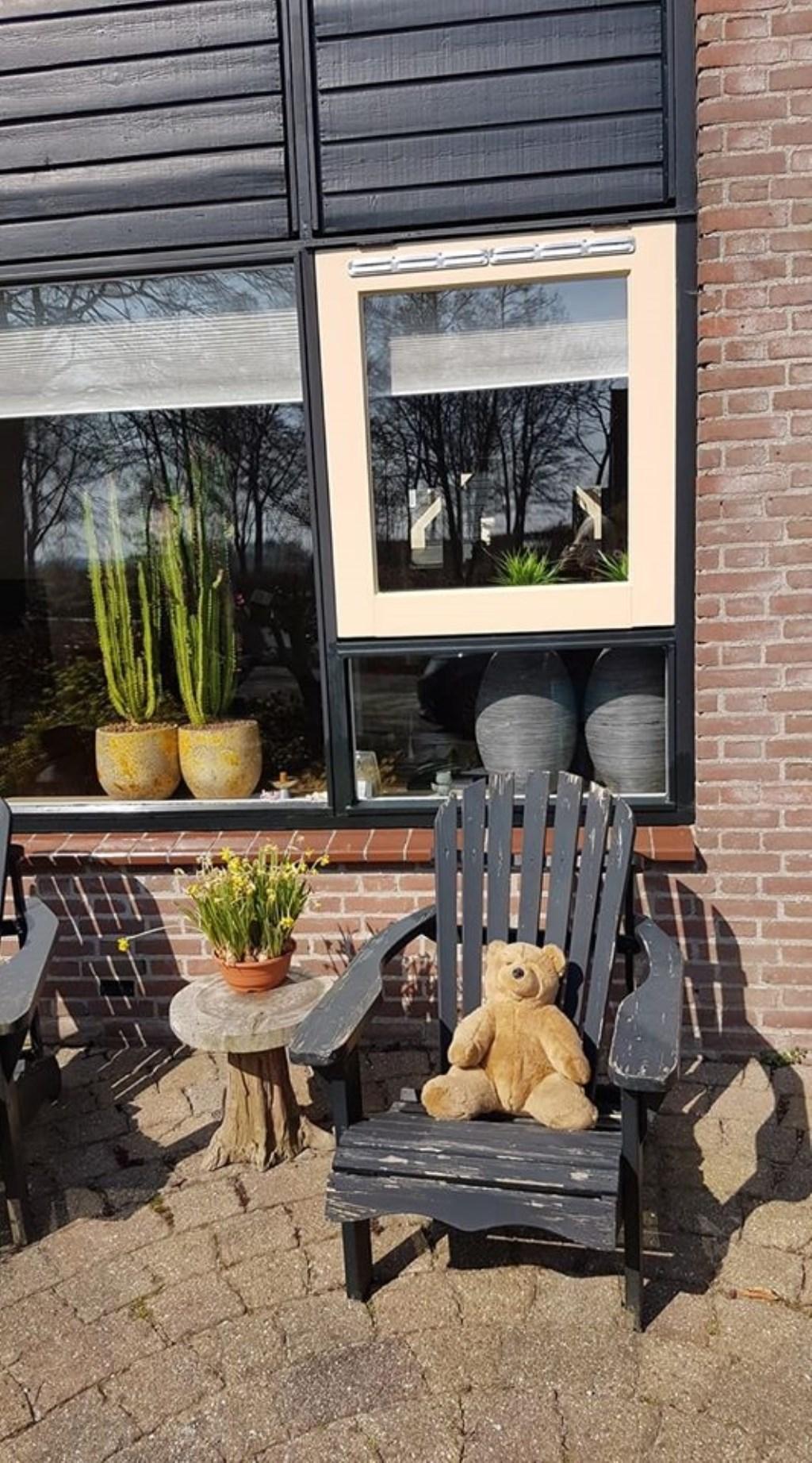 Heel Noord-Holland gaat op berenjacht. In de tuin van Atie Roos in Schagen zit er eentje te zonnen. Foto: Atie Roos © rodi