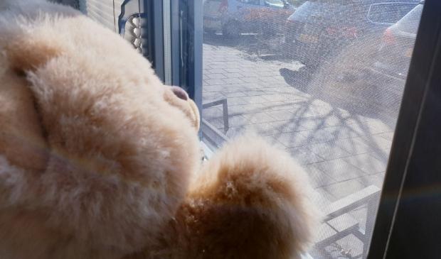 Zit er bij u al zo'n gezellig beertje voor het raam?