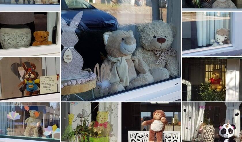 Een collage van beren die gespot zijn ....