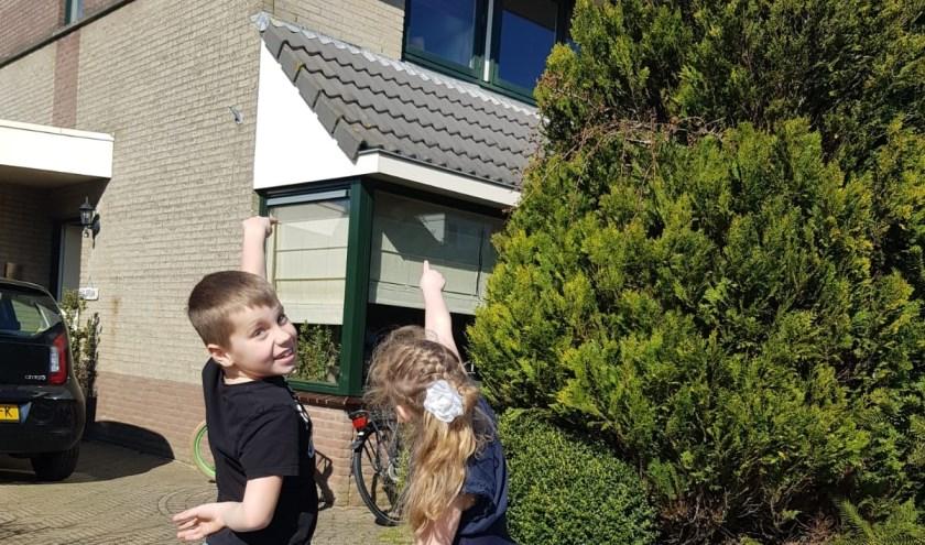 """""""Kijk daar zit een beer voor het raam!"""", roepen Maarten en Saar."""